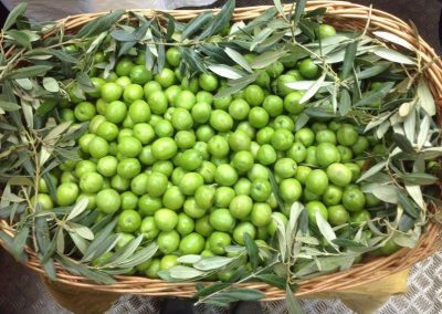 Cesto di olive