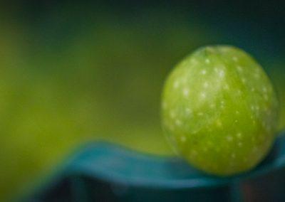 nocellara del belice curaba castelvetrano -17